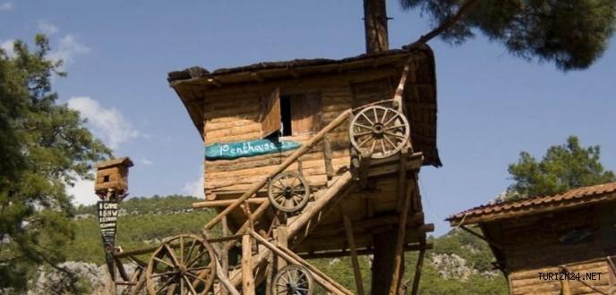 Alternatif turizmin gözdesi Ağaç Evler